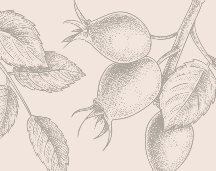 Organic Rosehip